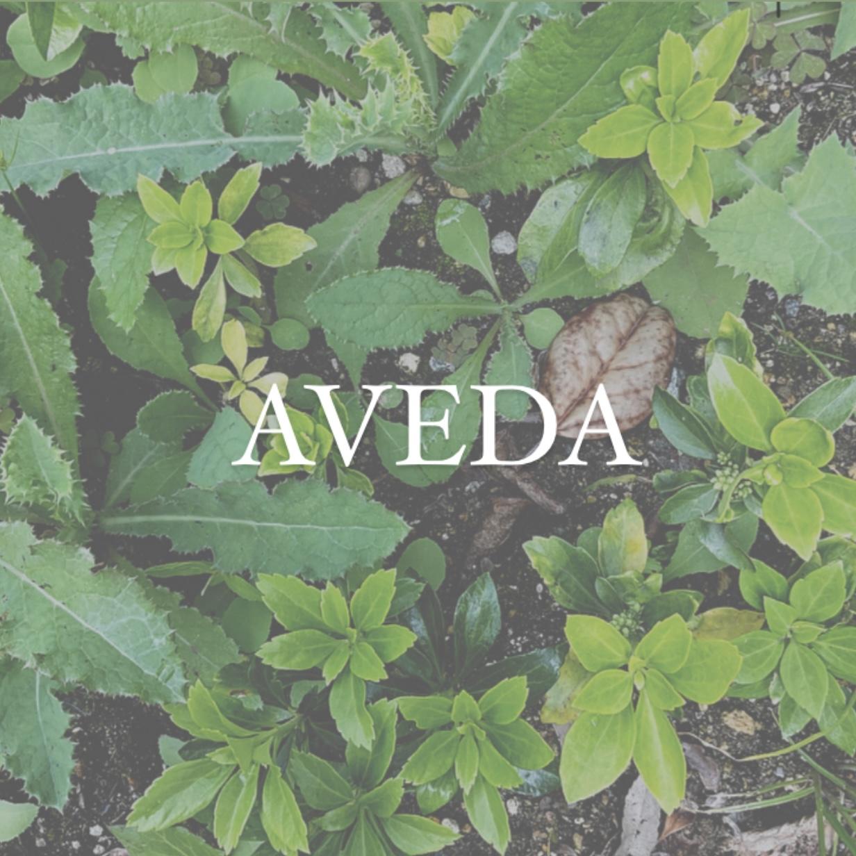 AVEDAとは…
